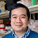 Freddy T. Nguyen, MD, PhD