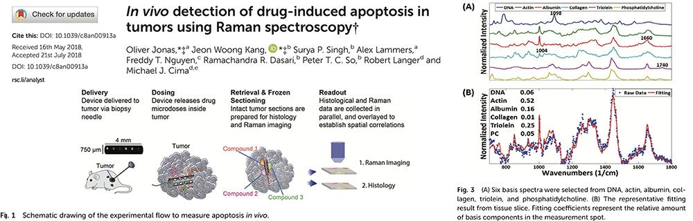 In vivo detection of drug-induced apoptosis in tumors using Raman spectroscopy