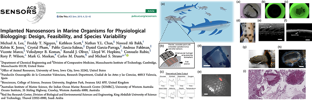 Implanted Nanosensors in Marine Organisms for Physiological Biologging: Design, Feasibility, and Species Variability
