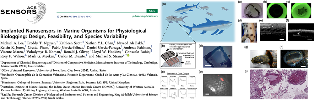 2019_-_lee_et_al._-_implanted_nanosensors_in_marine_organisms_for_physiological_biologging_design_feasibility_and_species_variability_banner
