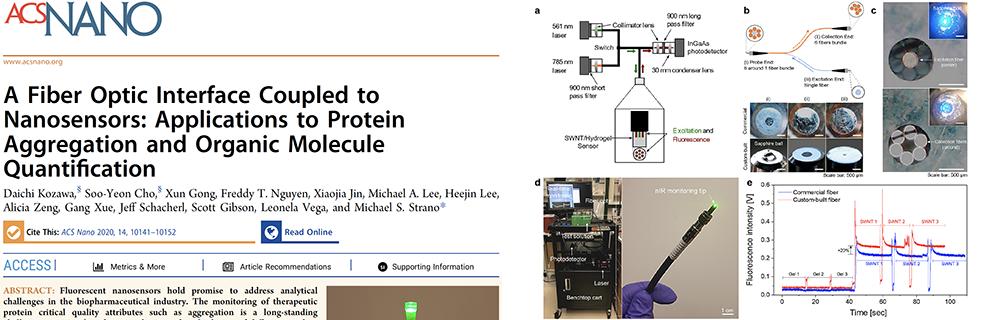 2020_-_kozawa_et_al._-_a_fiber_optic_interface_coupled_to_nanosensors_applications_to_protein_aggregation_and_organic_molecule_quantific
